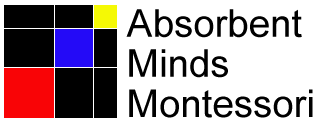 Absorbent Minds Montessori promo codes