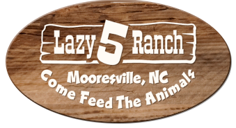 Lazy 5 Ranch