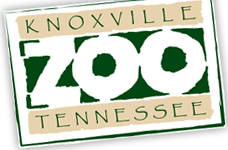 Zooknoxville promo codes